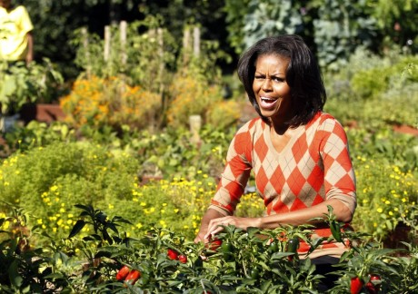 169343-u-s-first-lady-michelle-obama-harvests-the-white-house-kitchen-garden-[1]